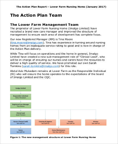 Free Action Plan 38 Examples In Word Pdf Excel