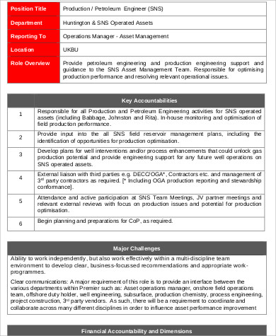 Petroleum Engineer Job Description Sample - 6+ Examples In Word, Pdf