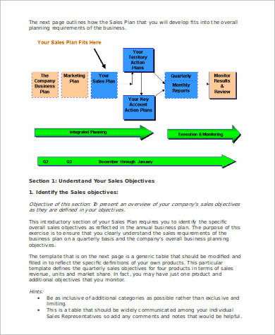 Sales Manager Action Plan Example  Individual Action Plan Template