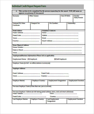 individual credit report request form example