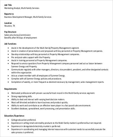 Marketing Analyst Job Description Sample   Examples In Word Pdf