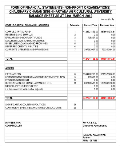 Non Profit Balance Sheet   Examples In Word Pdf