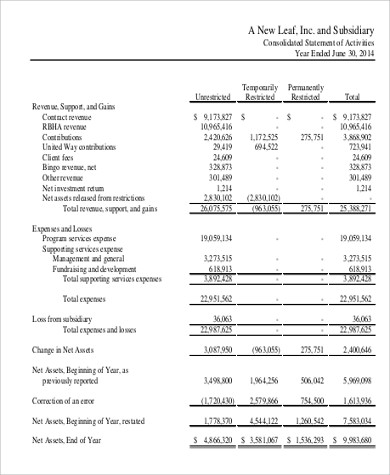 non profit financial balance sheet