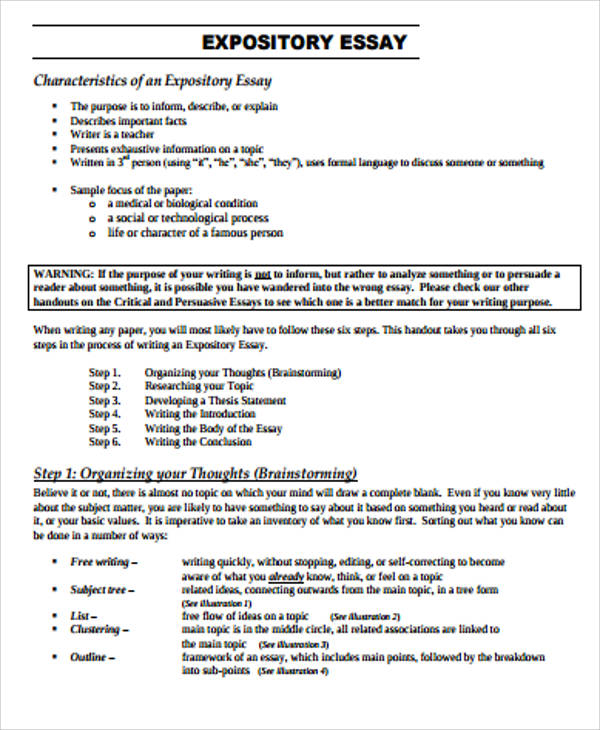 Sample Expository Essay   Examples In Word Pdf