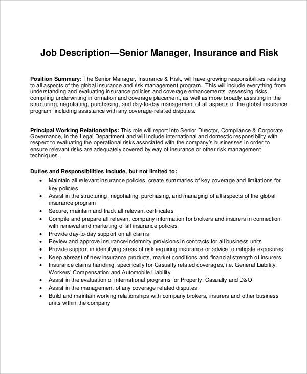 Risk Management Job Description Sample   Examples In Word Pdf