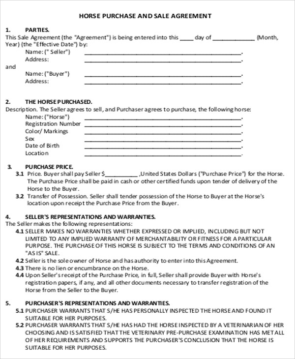 Sample Horse Sales Contract   Examples In Word Pdf