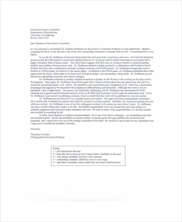 Sample Recommendation Letter From Professor   Examples In Word Pdf