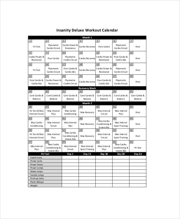 Sample Insanity Workout Sheet   Examples In Word Pdf Excel