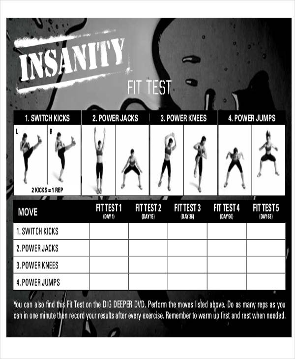 Insanity Workout Sheet | 6 Sample Workout Tracking Sheets Sample Templates