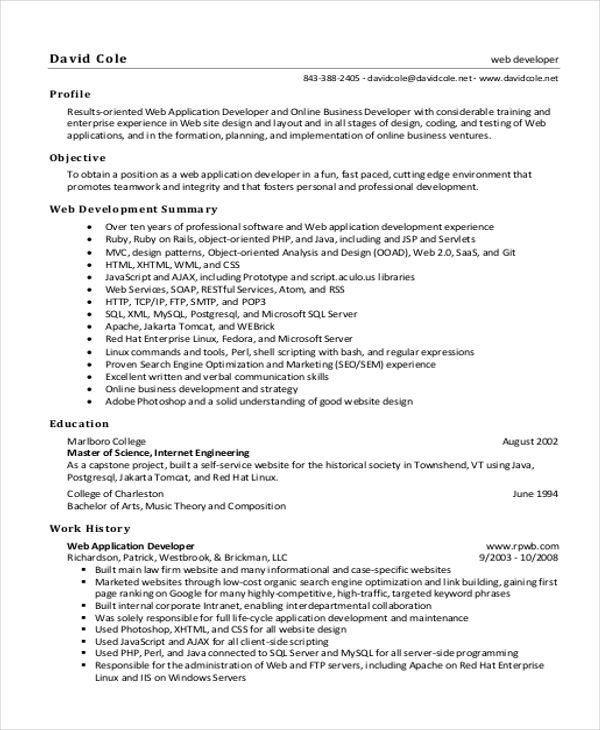 It Resume Sample - 12+ Examples In Word, Pdf