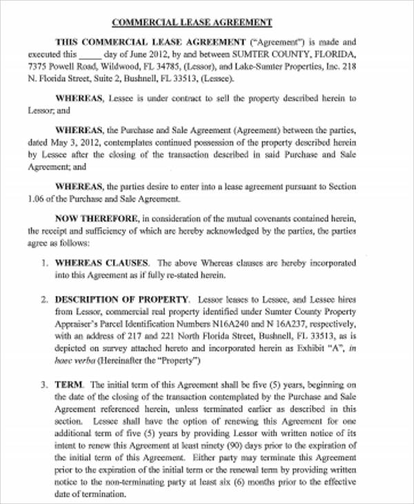 Sample Standard Commercial Lease Agreement   Examples In Word Pdf