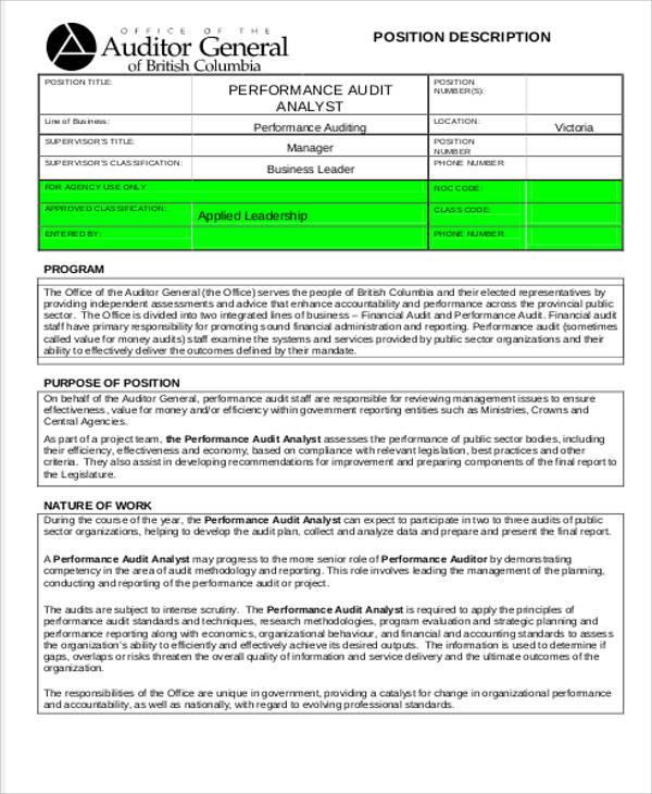management and audit analyst job description