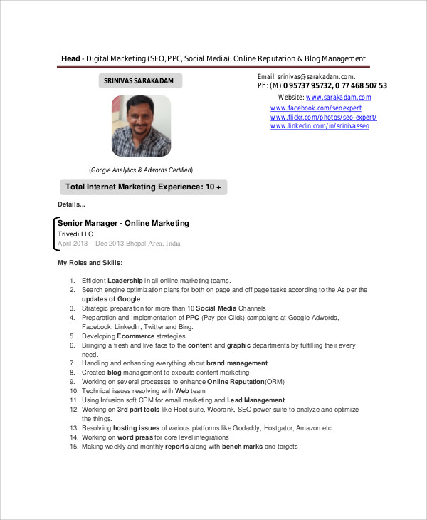 digital marketing resume example2