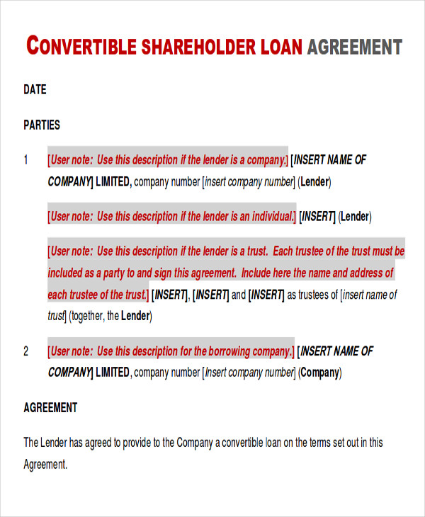 loan to shareholder agreement example