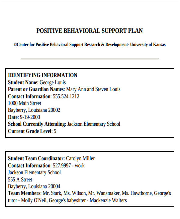 Positive Behavior Intervention Plan Sample