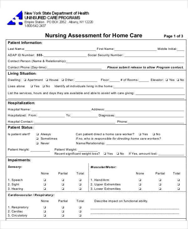 Nursing Assessment Form Sample   Examples In Word Pdf