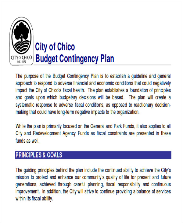contingency budget plan example