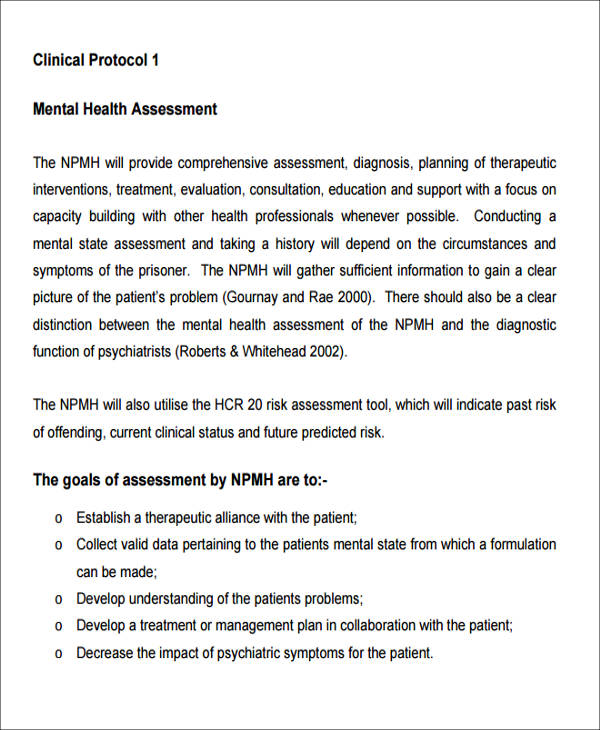 Sample Mental Health Assessment   Examples In Word Pdf