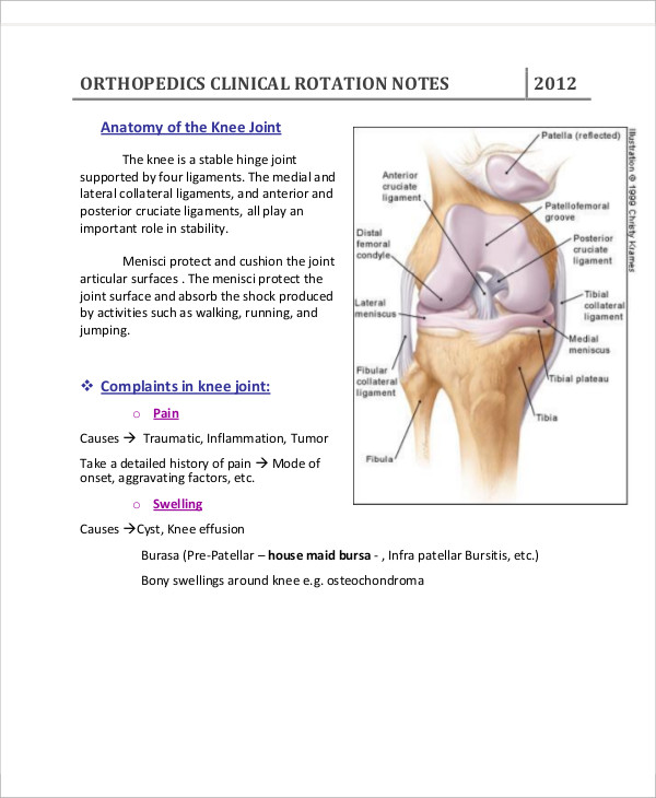 orthopedic clinic note1