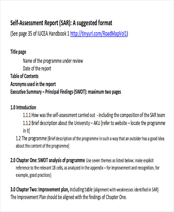 Assessment Report Format Sample - 8+ Examples In Word, Pdf