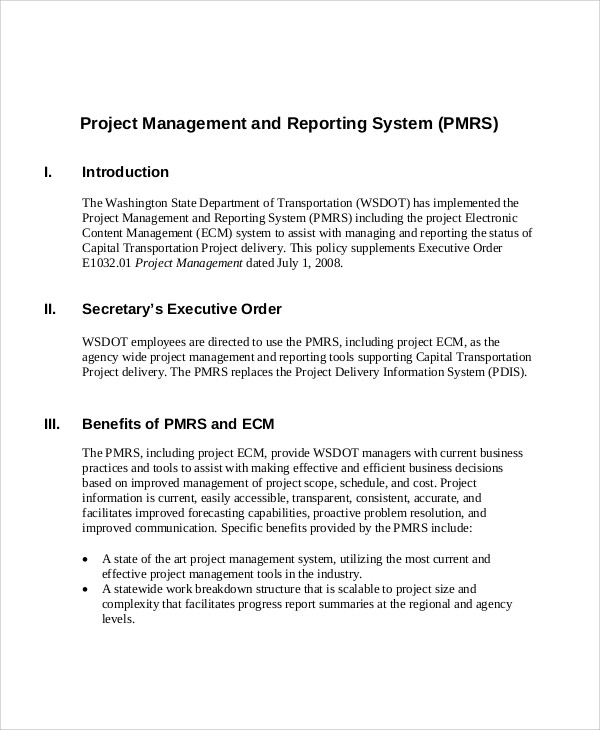 Sample Project Management Report   Examples In Pdf Word