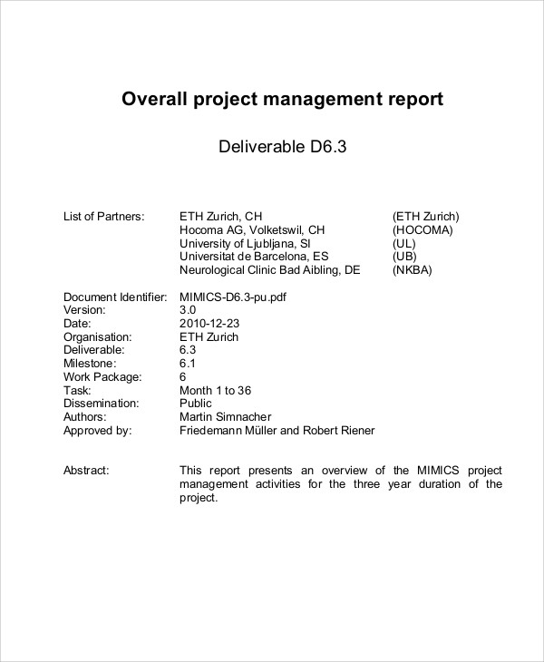 project management report example