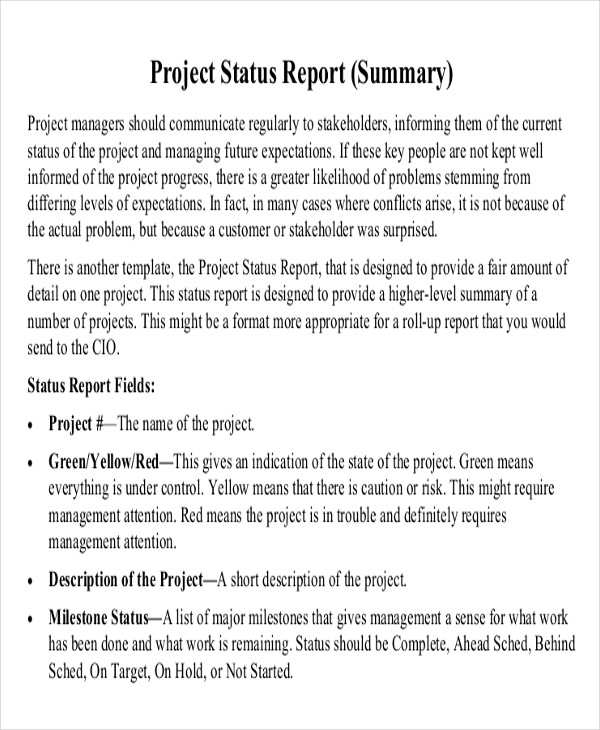 Project Status Report Example  Project Report Writing Template