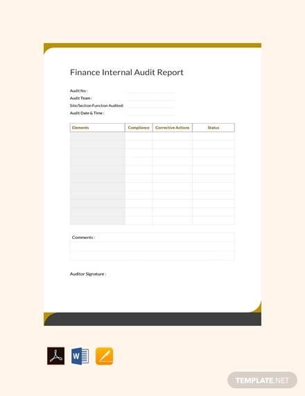 finance internal audit report