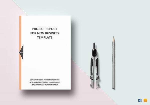 Sample New Business Project Report  How To Format A Business Report