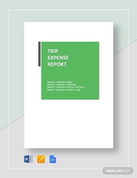 trip expense