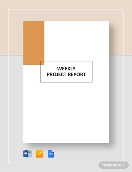 weekly project report