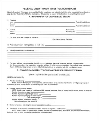 credit investigation report