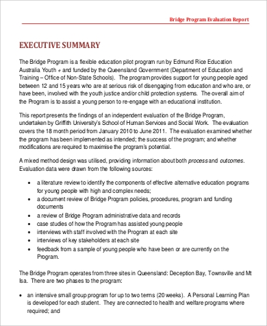 program evaluation sample report
