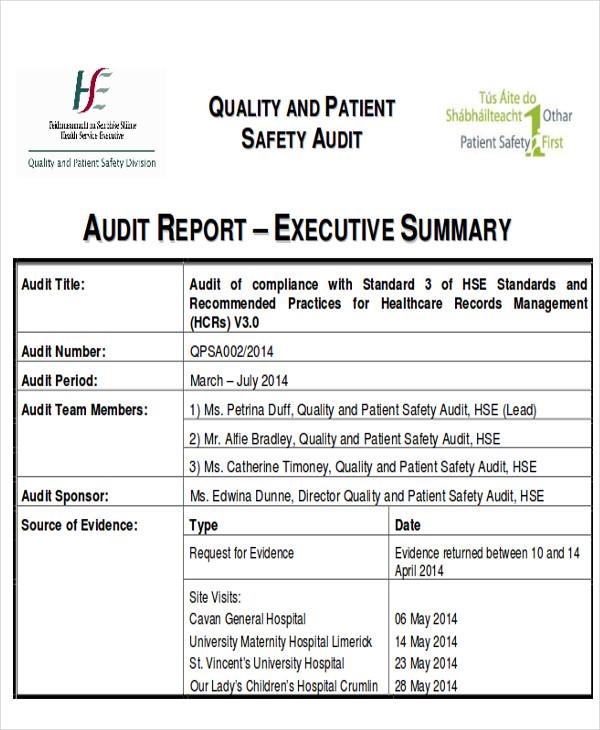 audit executive report free