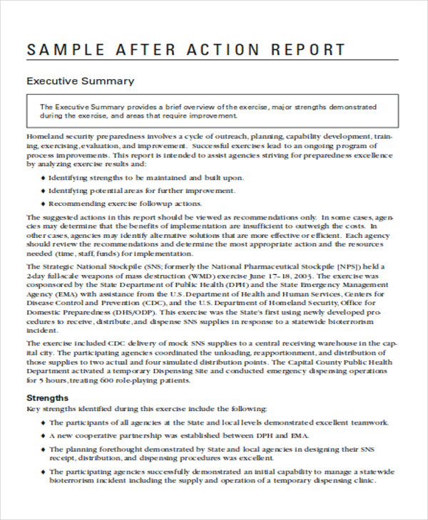 Sample Action Report  Free Sample Example Format Download