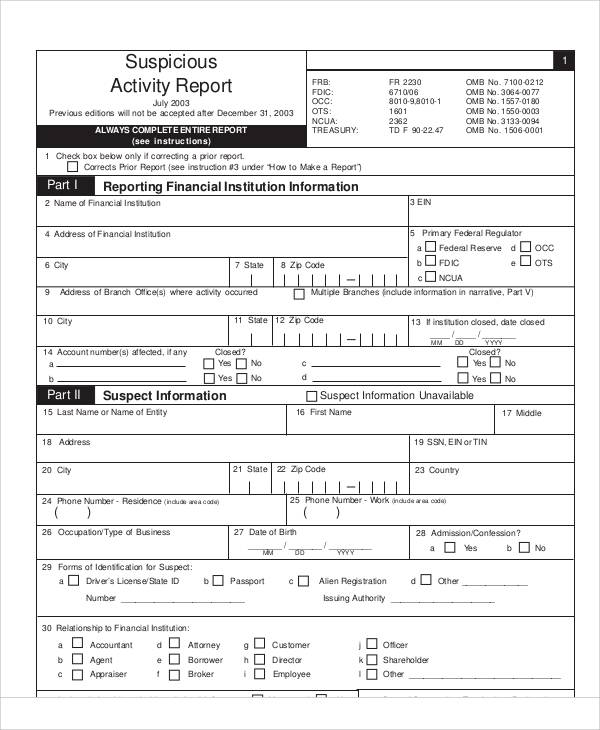 16+ Sample Activity Report - Free Sample, Example, Format Download