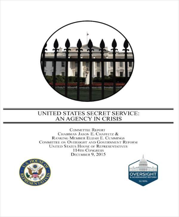 secret service report pdf