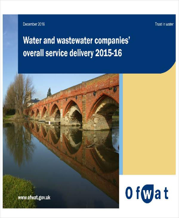 service delivery report