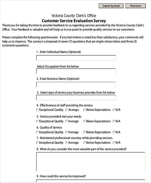 customer service evaluation survey form
