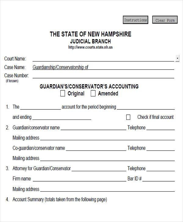 guardianship accounting form pdf