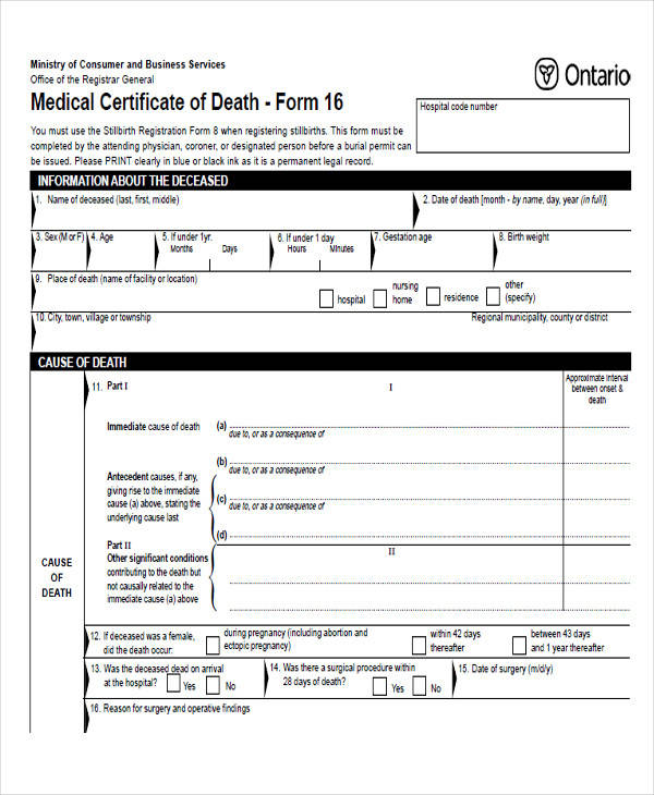 Hospital Medical Certificate Format  BesikEightyCo