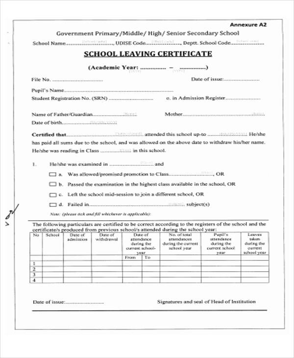 primary school leaving certificate