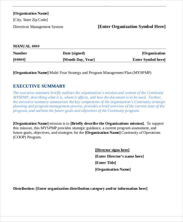 Program Management Plan Sample   Examples In Word Pdf