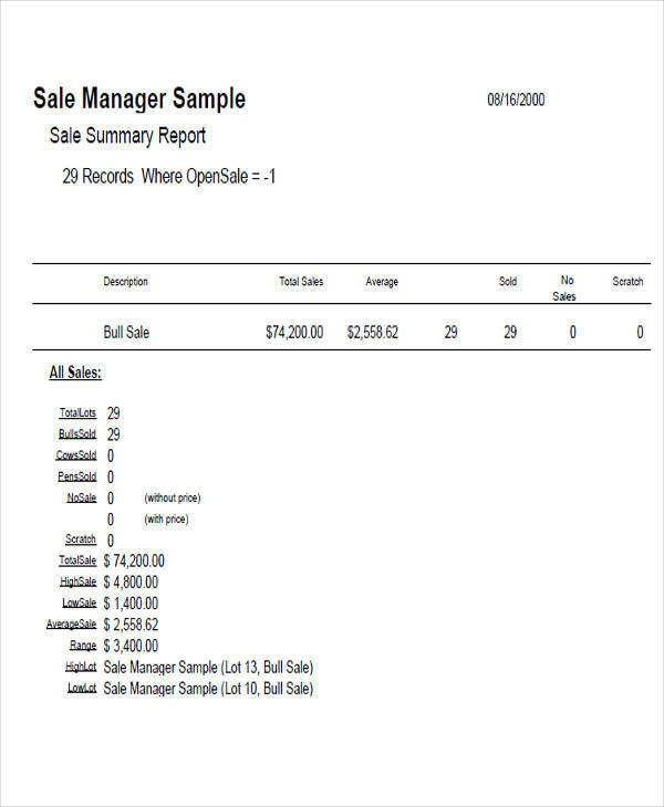 sales manager report