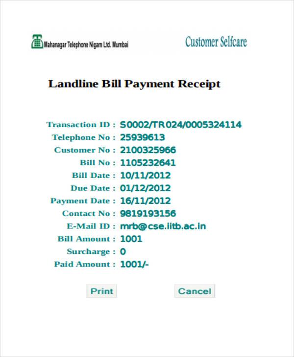 sample bill payment receipt