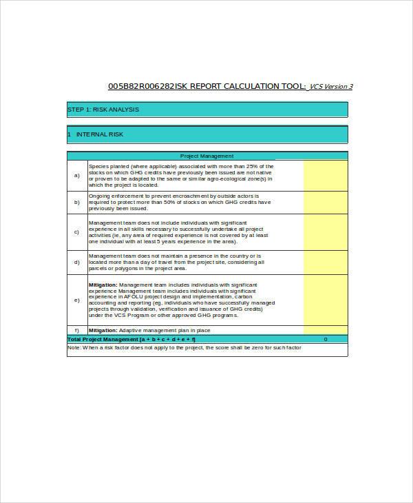 sample risk report