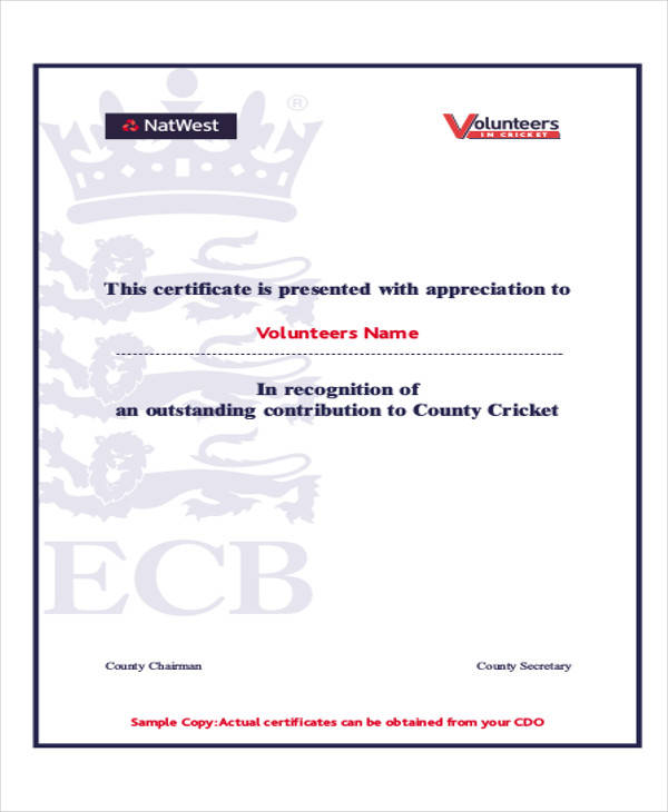 volunteer award certificate pdf