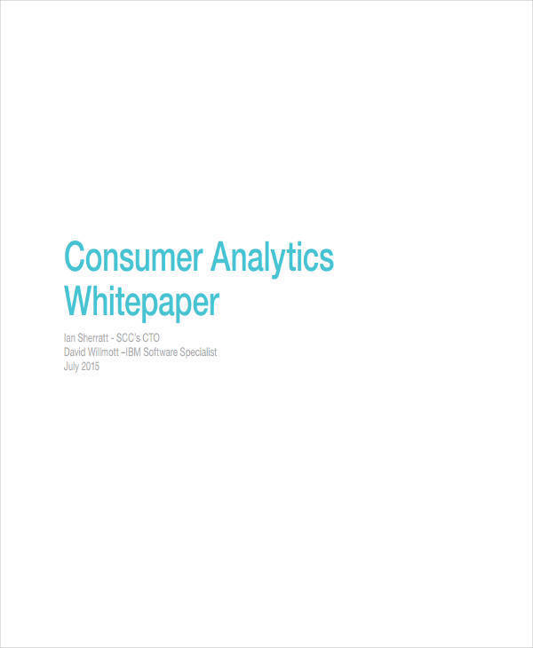 business analytics white paper2