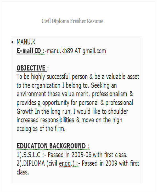 43 Professional Fresher Resumes
