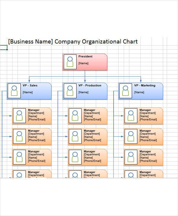 company organization chart2